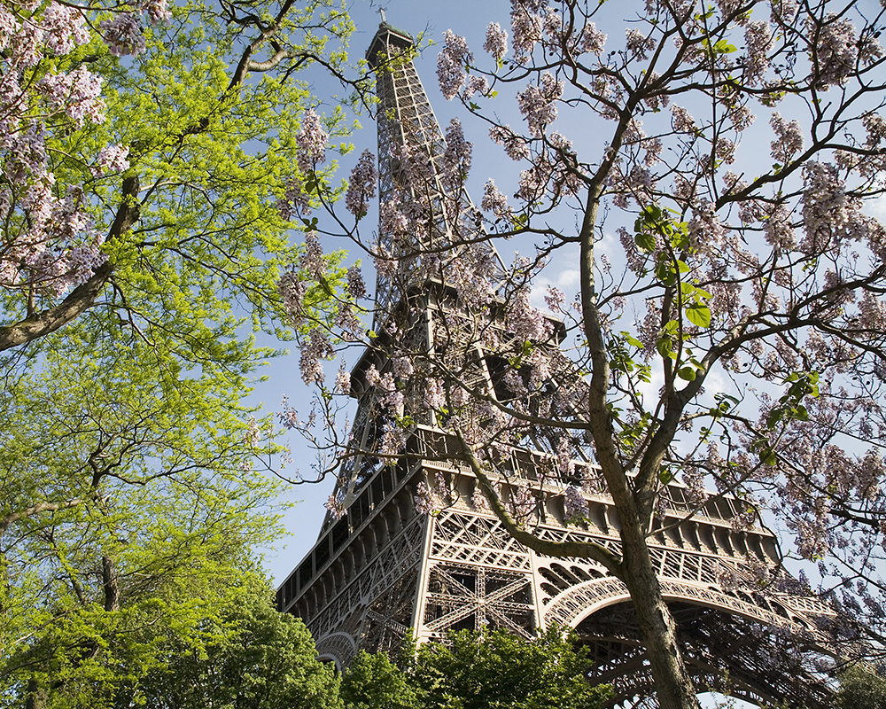 photo of the Eiffel Tower in spring