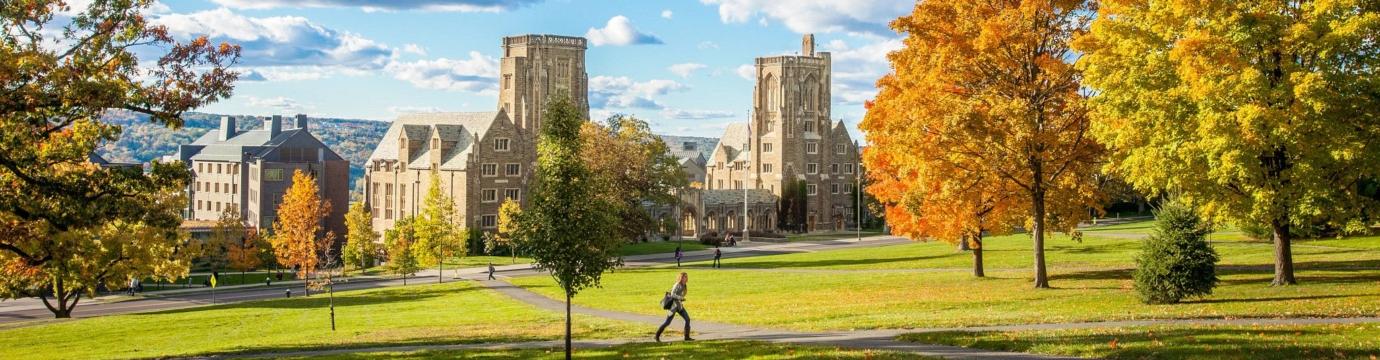 Law School campus in fall
