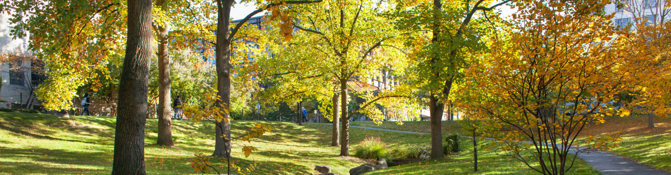 An image of the grounds of Cornell University in early autumn, showing vivid fall colors.