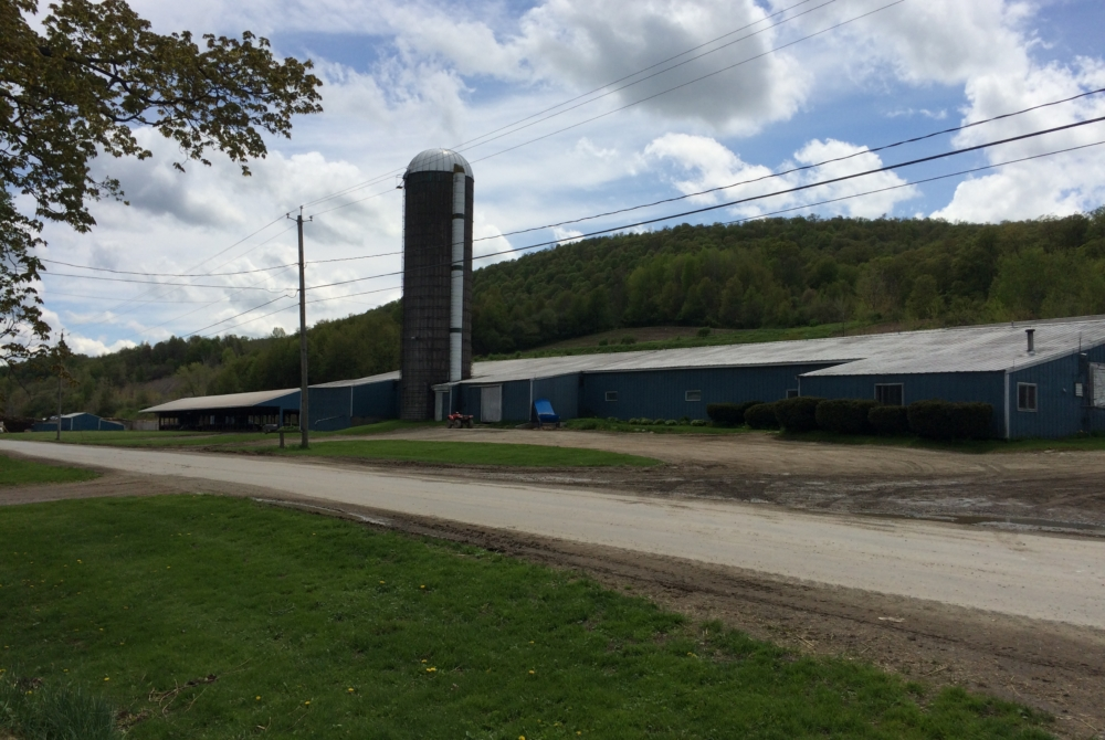 a photo of a low-slung blue barn with a tall silo under a blue sky in spring.