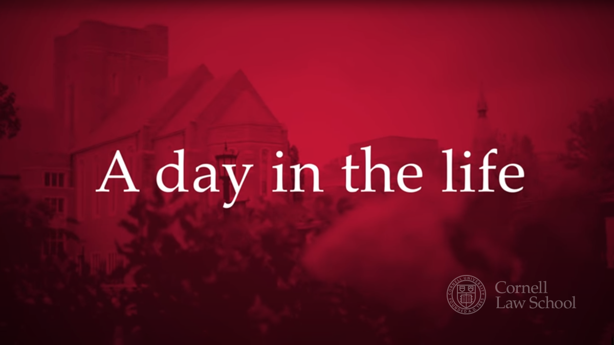 A day in the life video thumbnail