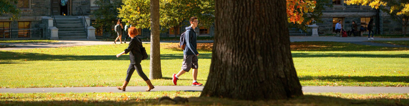 Students crossing paths on a walkway, with the trunk of a large tree in the foreground.