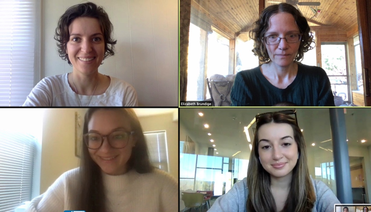 Video conference with four attendees