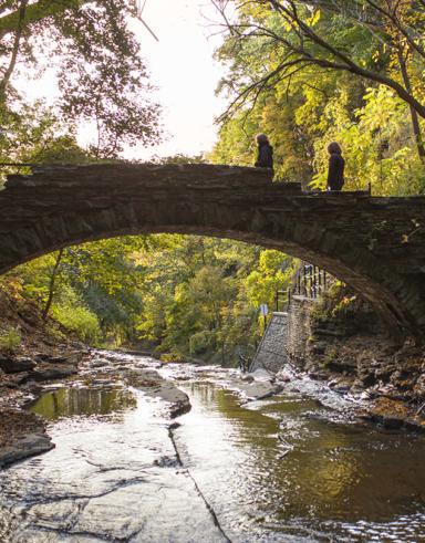 gorge with a stone bridge